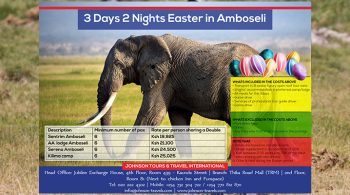 Johnson Tours and Travel - Amboseli Poster Design Fix Kenya Limited