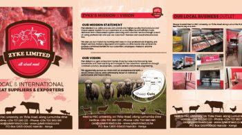 Zyke Limited Company Profile Design by Fix Kenya Limited