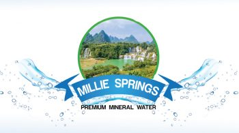 Fix Kenya Limited Clients Logo Design - Millie Springs