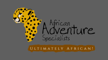 African Adventure Specialists - Fix Kenya Limited Logo Graphic Design Clients in Kenya
